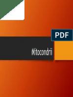 Mitocondrii.pptx