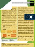 Practica 3 Actividad antinociceptiva.pptx