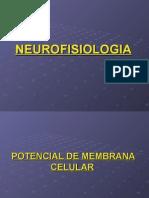 aula_2_fisio__neuro.ppt