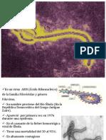 Ébola.pptx