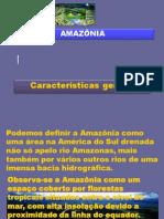 7_amazonia_3bim_10.ppt