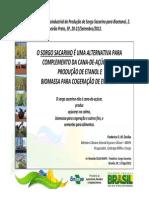 App_Embrapa_Açúcar.pdf