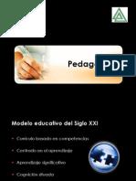 mec1modeloporcompetencias-090925004835-phpapp01.ppt