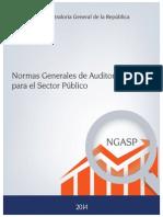LG 184 25-09-14 CGR Normas Gen de Aud SP 2015.pdf