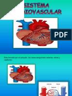 diapositiva cardiovascular.pptx