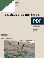 catalogo botánica.pptx