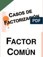 casosdefactorizacin-130404162014-phpapp02.pptx