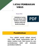 Isolasi Virus