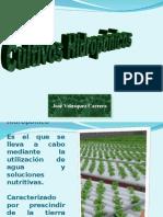 Aula 9 Cultivos Hidopónicos.ppt