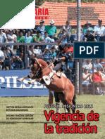PECUARIA Y NEGOCIOS - AÑO 9 - NUMERO 102 - ENERO 2013 - PARAGUAY - PORTALGUARANI