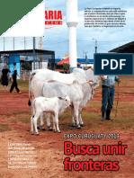 PECUARIA Y NEGOCIOS - AÑO 9 - NUMERO 104 - MARZO 2013 - PARAGUAY - PORTALGUARANI