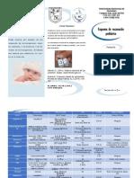 Triptico esquema vacunación.pdf