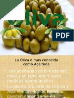 Oliva.pptx