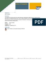 SAP is-U Overall Process
