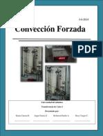 marco teorico lab de convección.pdf