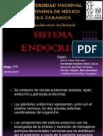 SIST. ENDOCRINO.pdf