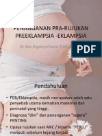 PENANGANAN PRA-RUJUKAN.pptx