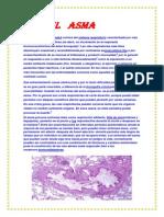 El   asma.docx