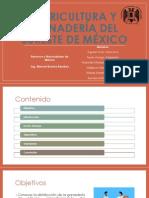 Agricultura y ganadería del sureste de México.pptx