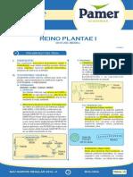 Bio_Sem_10_Reino Plantae.pdf