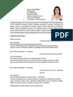 CV INEI.docx