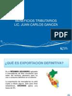 EXPORTACION DEFINITIVA PROMPERU.pdf