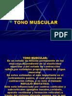 10-tono-muscular.ppt
