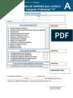 ProfesionalA-Final.pdf