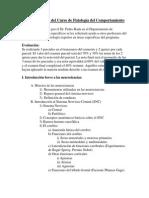 Programa del Curso 2011.docx
