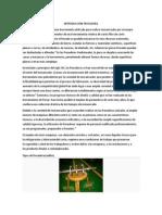 INTRODUCCION FRESADORA.docx