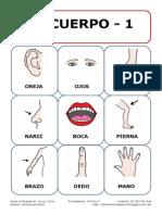 Bingo pictos el cuerpo.pdf