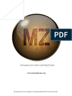 Mz Steadycam Manual.pdf