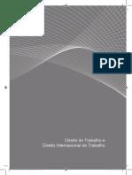 68674_cj_dir_do_trab_dir15- Direito do Trabalho e Direito Internacional do Trabalho - JUR.pdf