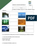 PRUEBA DE CIENCIAS NATURALES SEGUNDO BASICO 2.doc
