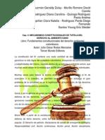 Mecanismos constitucionales de tutela del derecho al ambiente sano (1).docx