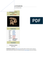 Artikel Sahelanthropus tchadensis.doc