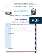 EL CUATERNARIO EN LA SELVA DEL PERÚ.doc
