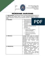 CUADRO DE DOBLE ENTRADA DERECHOS HUMANOS.docx