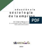 sociologia de la empresa  (1).pdf