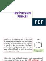 compuestos fenolicos.pptx