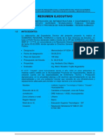 02 Resumen Ejecutivo Tinyash.docx