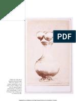 museo del oro.pdf
