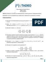 Taller 3 CCE Álgebra Lineal.pdf