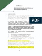practica2topo1.pdf