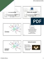 06 TQ - Calores de reacción.pdf