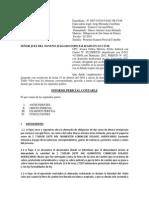 INFORME PERICIAL LETRA DE CAMBIO[2].docx