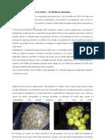 INF. PAIS.ALIMENTAÇÃO.pdf