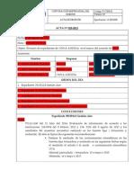 MODELO DE ACTA 2014.docx