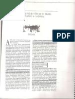 As Ocupações Pré Históricas No Brasil. Niéde Guidon