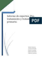 experto_1_Correxido.pdf
